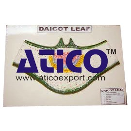 Dicot Leaf Ts