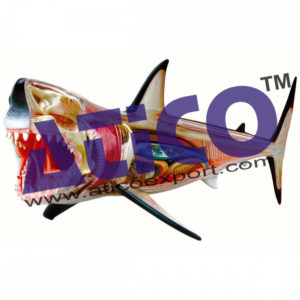 4d-vision-great-white-shark-anatomy-model_1000