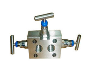 Manifold Instrument